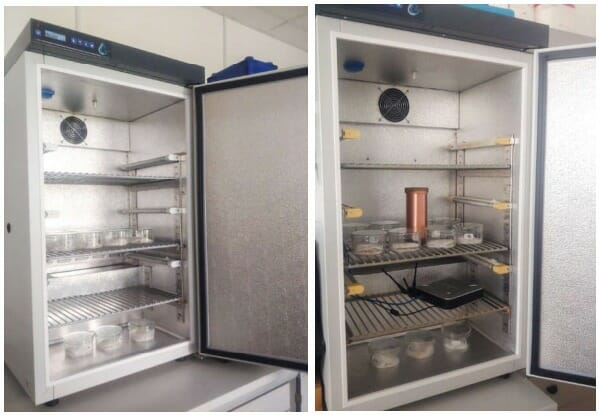 Установка эксперимента с бионной установкой