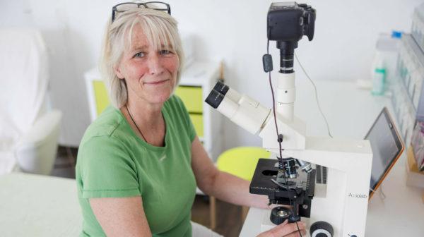 Dunkelfeldmikroskopie – Elektrosmog-Belastung sichtbar bei Blutanalyse_Britta Varnhorn